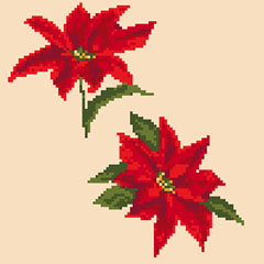 poinsettia pattern image