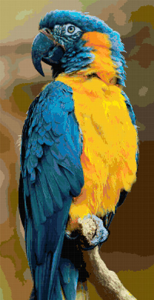 blue throated macaw cross stitch image