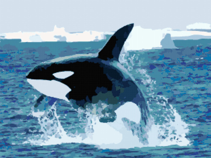 orca killer whale cross stitch image