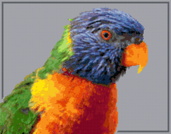 rainbow lorikeet cross stitch image