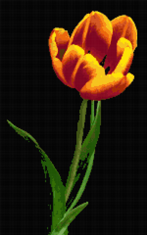 tulip on black cross stitch image
