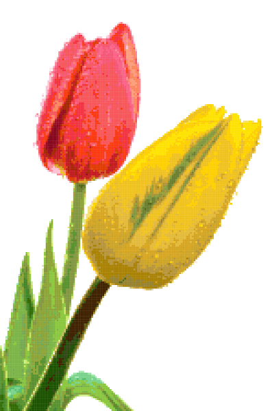 tulips red and yellow cross stitch image