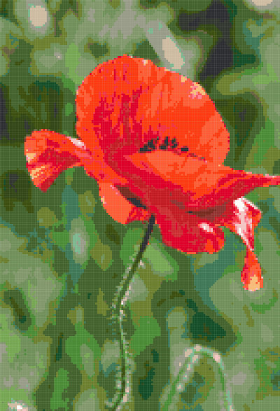 poppy cross stitch image