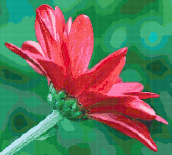 red flower cross stitch image