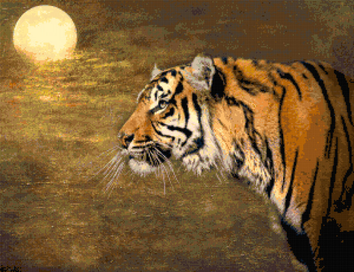 tiger cross stitch image
