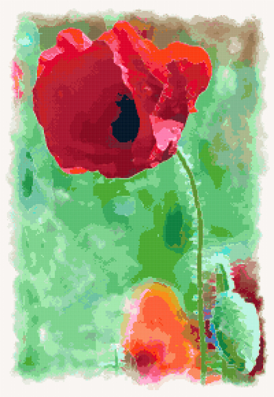 red poppy cross stitch image