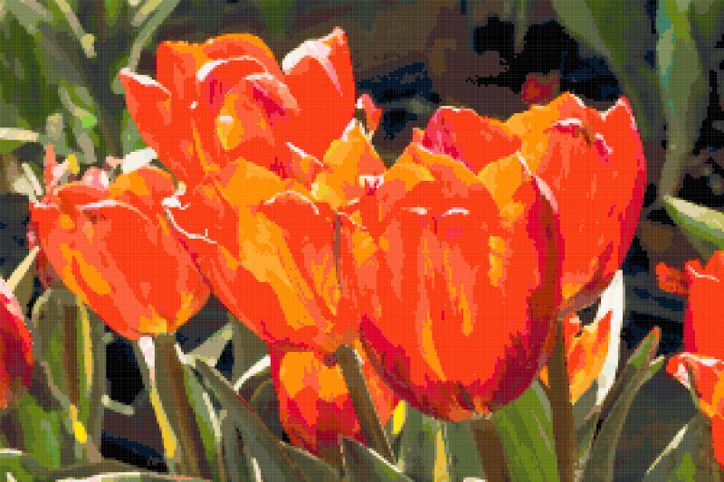 tulips in the sun cross stitch image