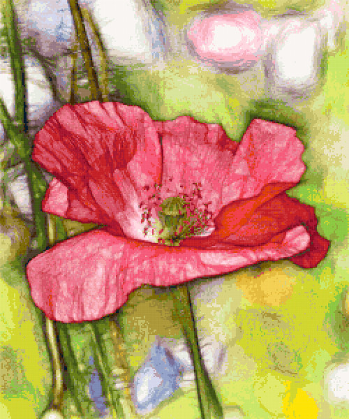 pink poppy cross stitch image