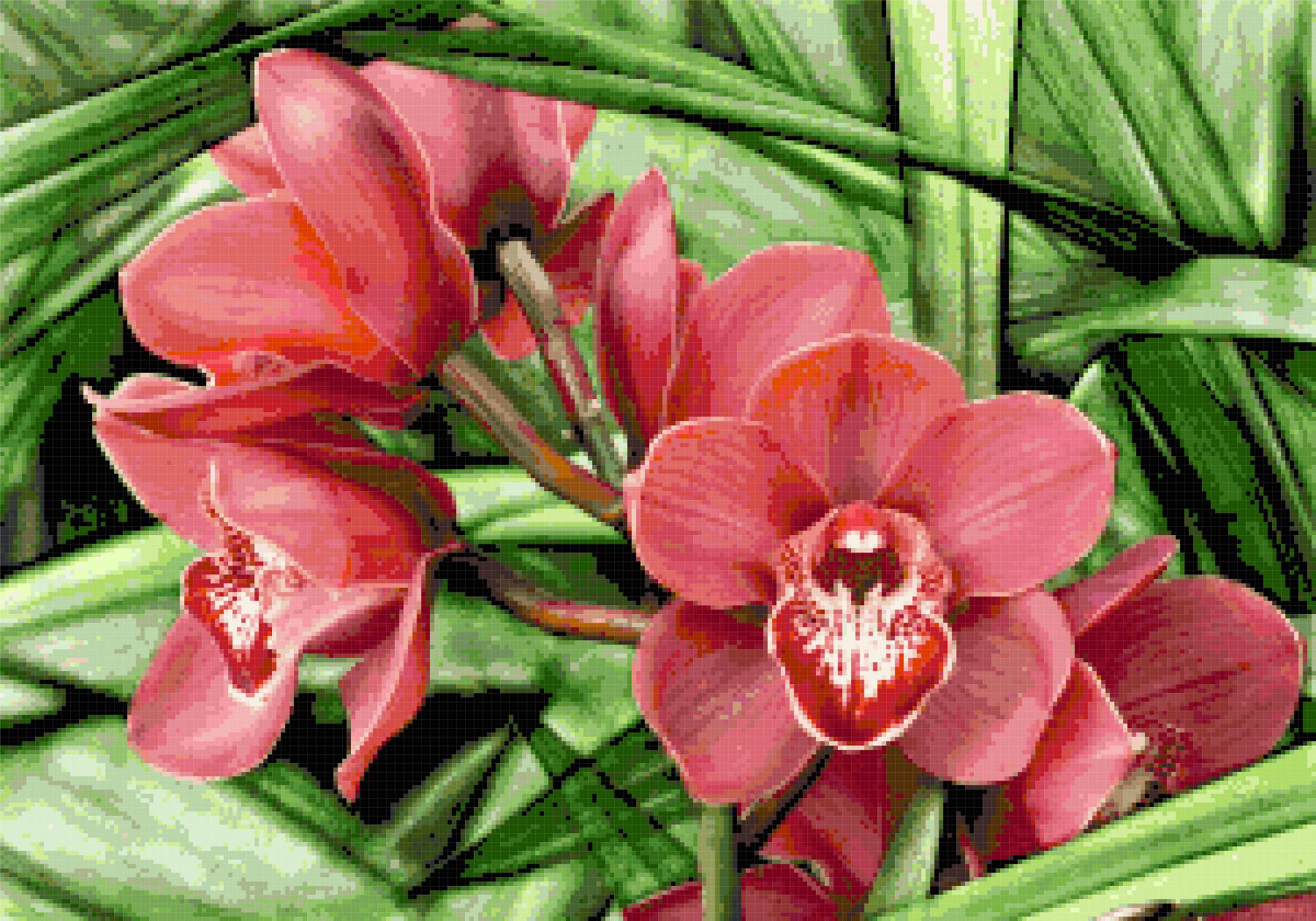 orchid cross stitch image