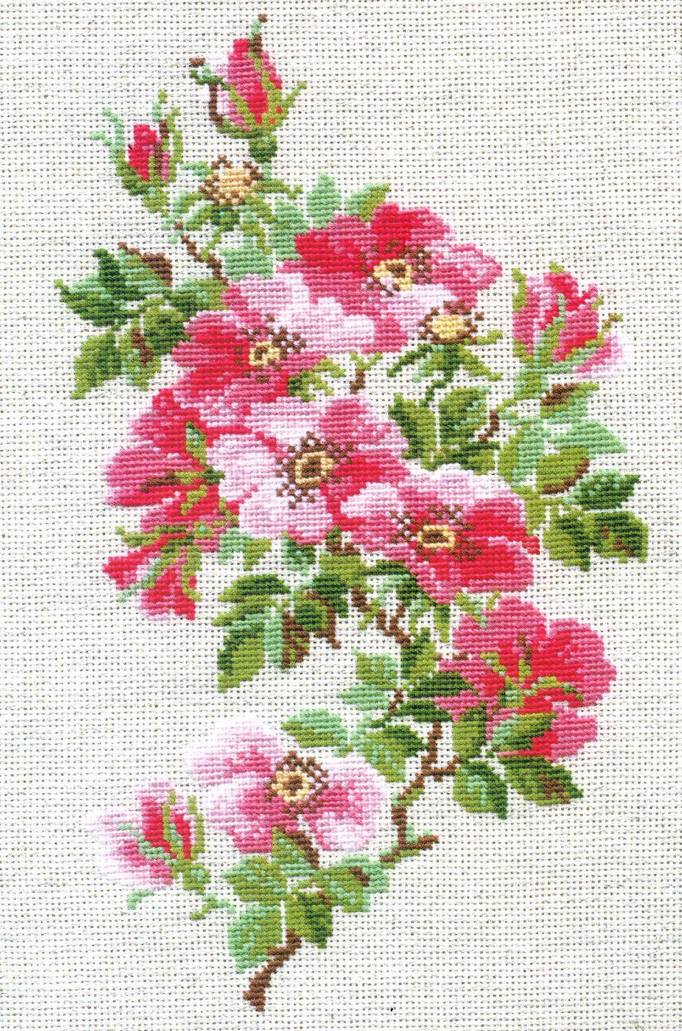 Free Cross Stitch Patterns Better Cross Stitch