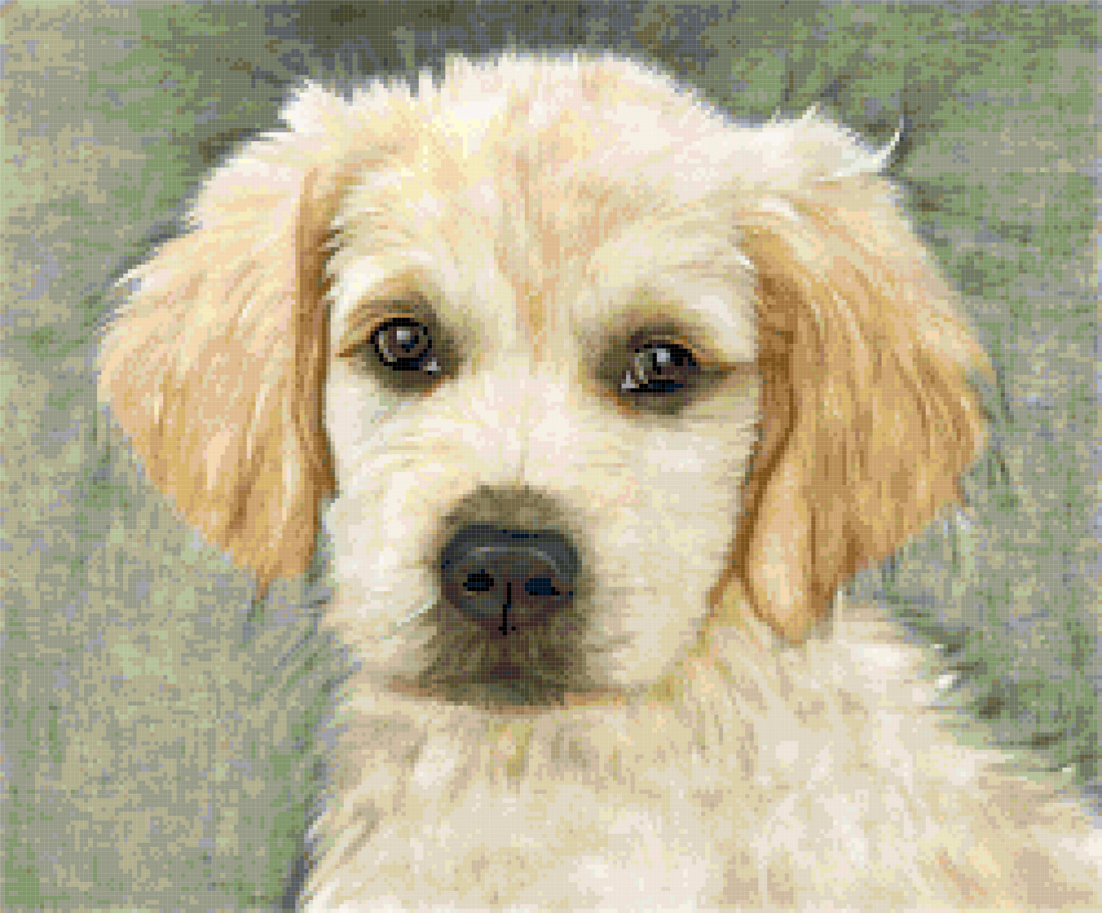 golden retriever cross stitch image