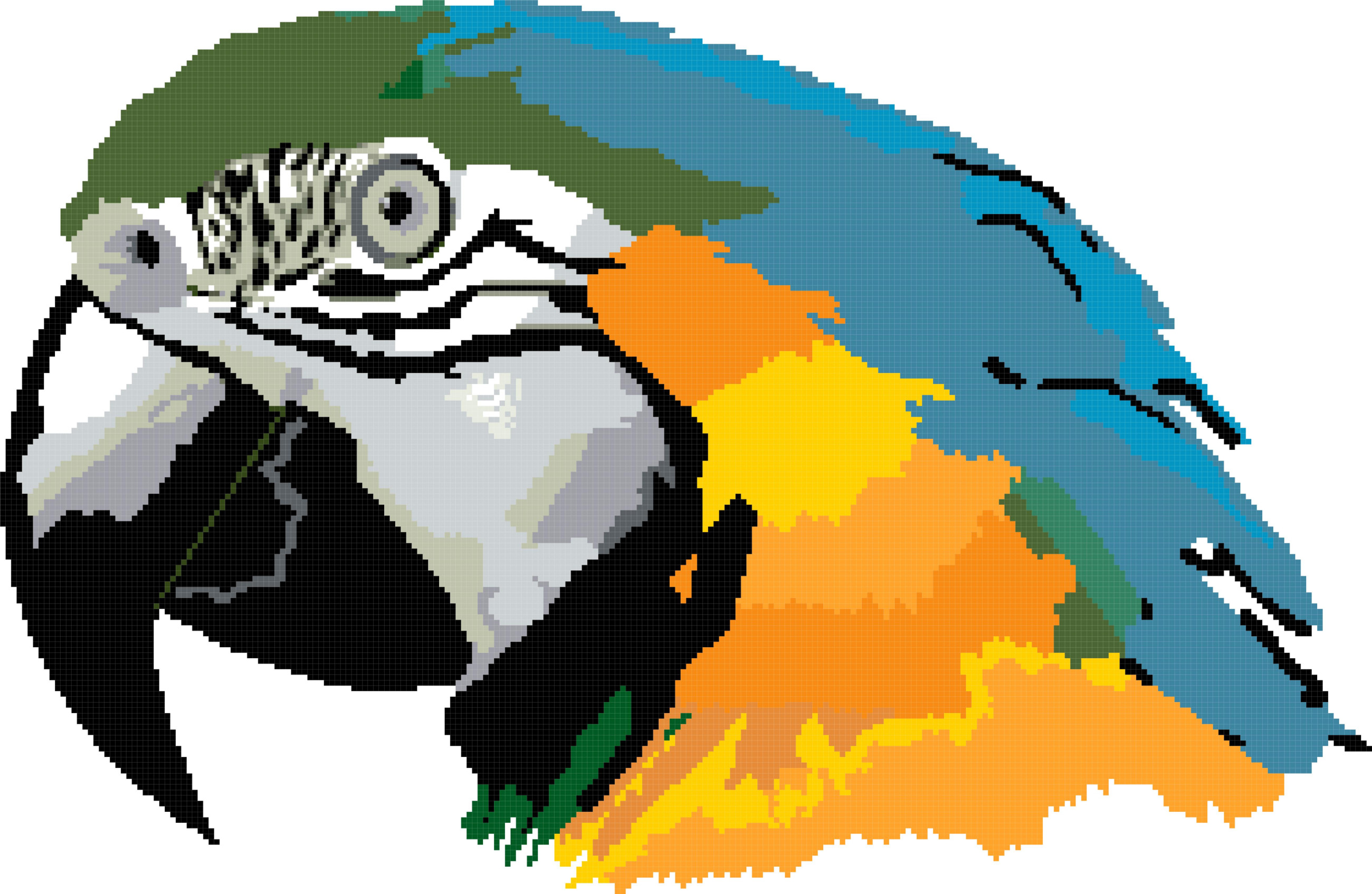 parrot painting cross stitch image
